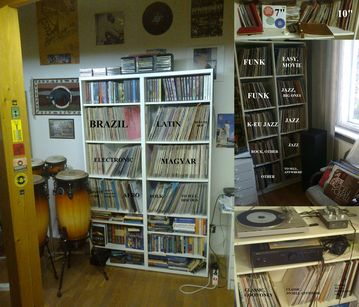my vinyls at home (click to enlarge it)